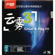 DHS Cloud & Fog